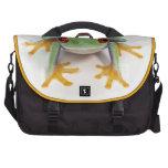 Female frog bag for laptop