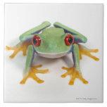 Female frog ceramic tile