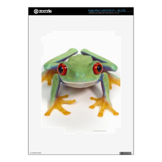 Female frog iPad 3 skins