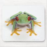 Female frog mousepad