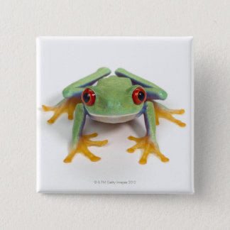 Female frog pinback button