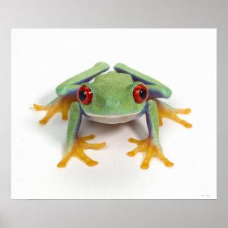 Female frog poster