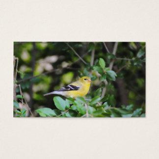 Female Goldfinch 2 Business Card