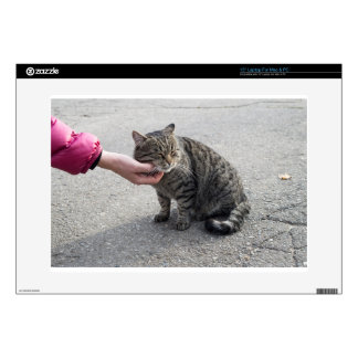Female hand closeup petting stray cat decal for laptop