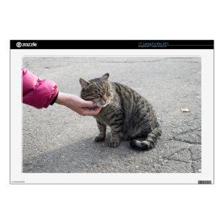 Female hand closeup petting stray cat laptop decal