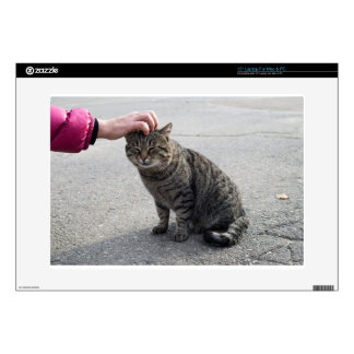 """Female hand closeup petting stray gray cat decal for 15"""" laptop"""
