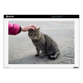 """Female hand closeup petting stray gray cat skin for 17"""" laptop"""