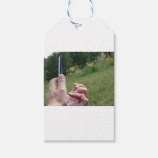 Female hands touching the screen of a smartphone gift tags