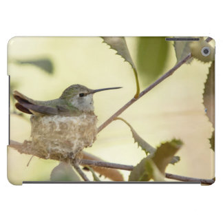 Female hummingbird on her nest cover for iPad air