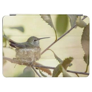 Female hummingbird on her nest iPad air cover
