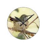 Female hummingbird on her nest round wall clock