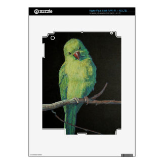 Female Indian Ringneck Parrot Decals For iPad 3