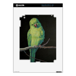 Female Indian Ringneck Parrot Skin For iPad 2