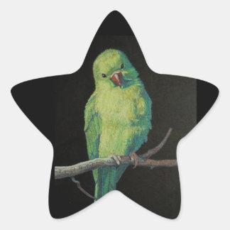 Female Indian Ringneck Parrot Star Sticker