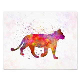 Female Lion in watercolor Fotografía