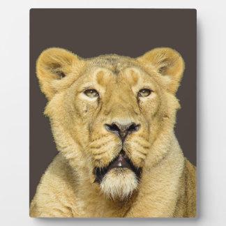 Female Lion Motivational Leadership Plaque