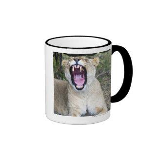 Female lion Panthera leo Masai Mara National Coffee Mugs