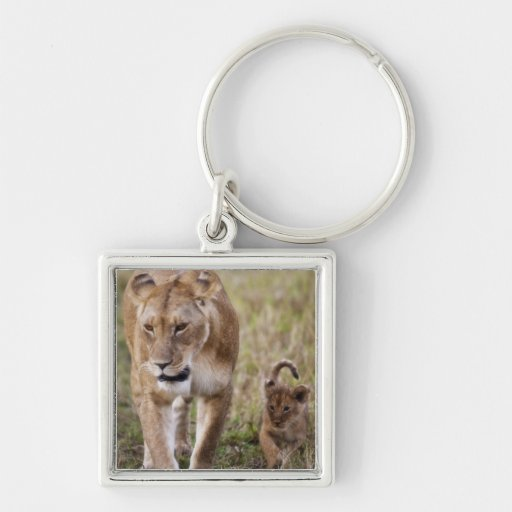Female Lion with cub (Panthera Leo) as seen in Key Chains