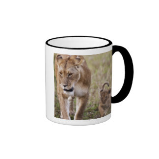 Female Lion with cub Panthera Leo as seen in Mug