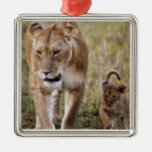 Female Lion with cub (Panthera Leo) as seen in Ornaments