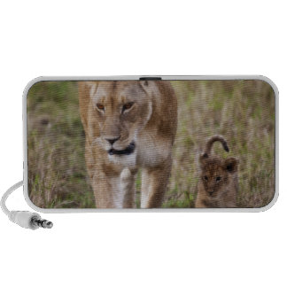 Female Lion with cub (Panthera Leo) as seen in Portable Speakers