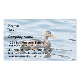 Female Mallard Business Card