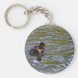 Female Mallard Duck and Ducklings Basic Round Button Keychain
