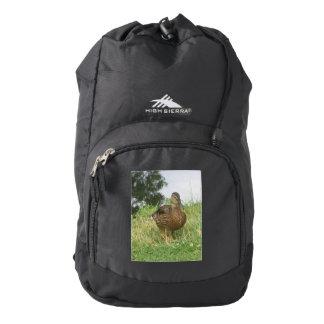 Female Mallard Duck Backpack