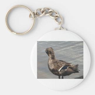 Female Mallard Duck Basic Round Button Keychain