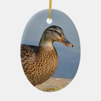 Female Mallard Duck Ceramic Ornament
