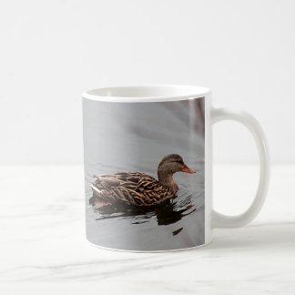 Female mallard duck coffee mug