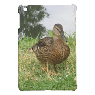 Female Mallard Duck Cover For The iPad Mini