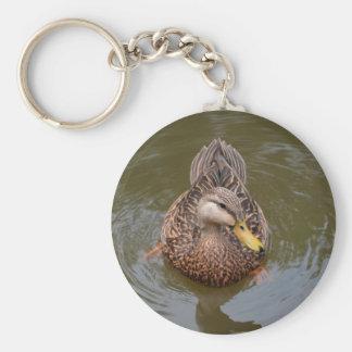 female mallard duck facing front basic round button keychain