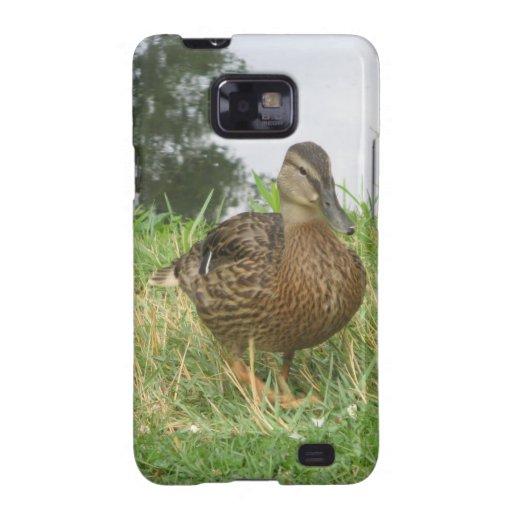 Female Mallard Duck Galaxy SII Cover