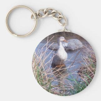 Female Mallard Duck Key Chain