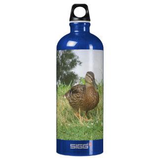 Female Mallard Duck Liberty Bottle SIGG Traveler 1.0L Water Bottle