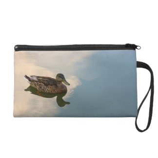 Female Mallard Duck Swimming Wristlets
