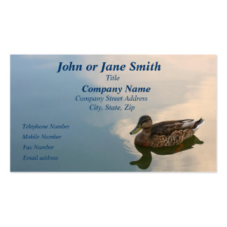 Female Mallard Duck Swimming Business Card Templates