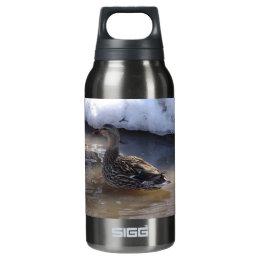 Female Mallard Insulated Water Bottle