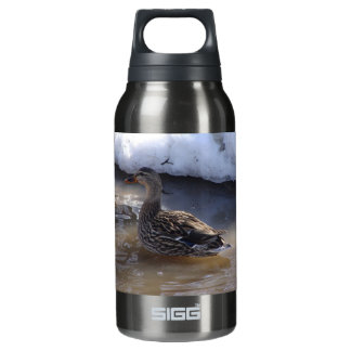 Female Mallard Insulated Water Bottle