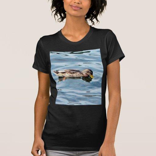 Female Mallard On Water Tshirts
