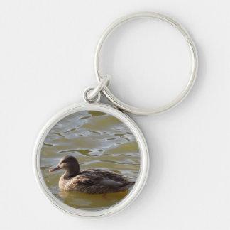 Female Mallard Swimming in Lake Silver-Colored Round Keychain