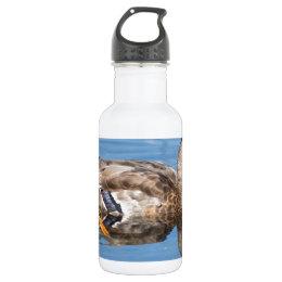 Female Mallard Water Bottle