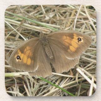Female Meadow Brown Butterfly Cork Coaster
