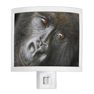 Female Mountain Gorilla Night Light