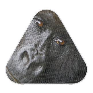 Female Mountain Gorilla Speaker