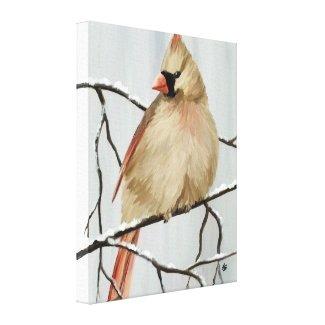 Female Northern Cardinal Bird Art Canvas Print