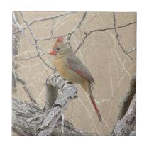 Female Northern Cardinal Ceramic Tile