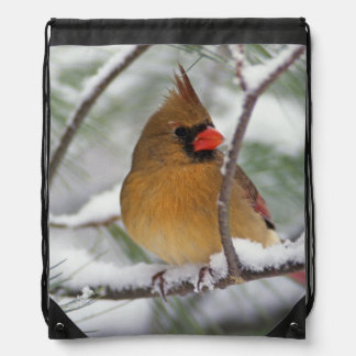 Female Northern Cardinal in snowy pine tree, Drawstring Bag