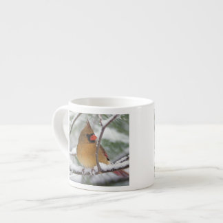 Female Northern Cardinal in snowy pine tree, Espresso Cup